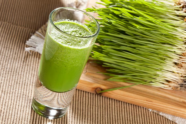 Why You Should Grow Wheatgrass at Home